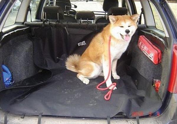 Deka ochranná do kufru auta